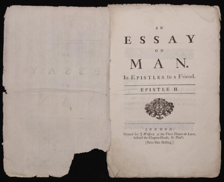 pope an essay on man epistle i 1733