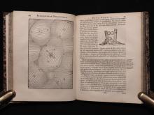 Descartes, Rene.  Principia Philosophiae