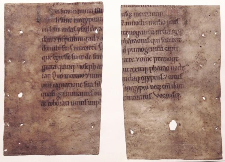 [Manuscript, 12th Century Fragments on Vellum]