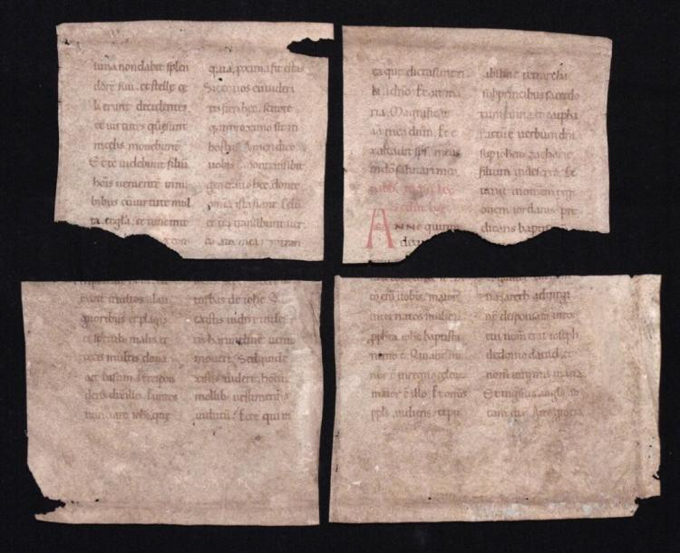 Ca. 11th Century Manuscript Fragments