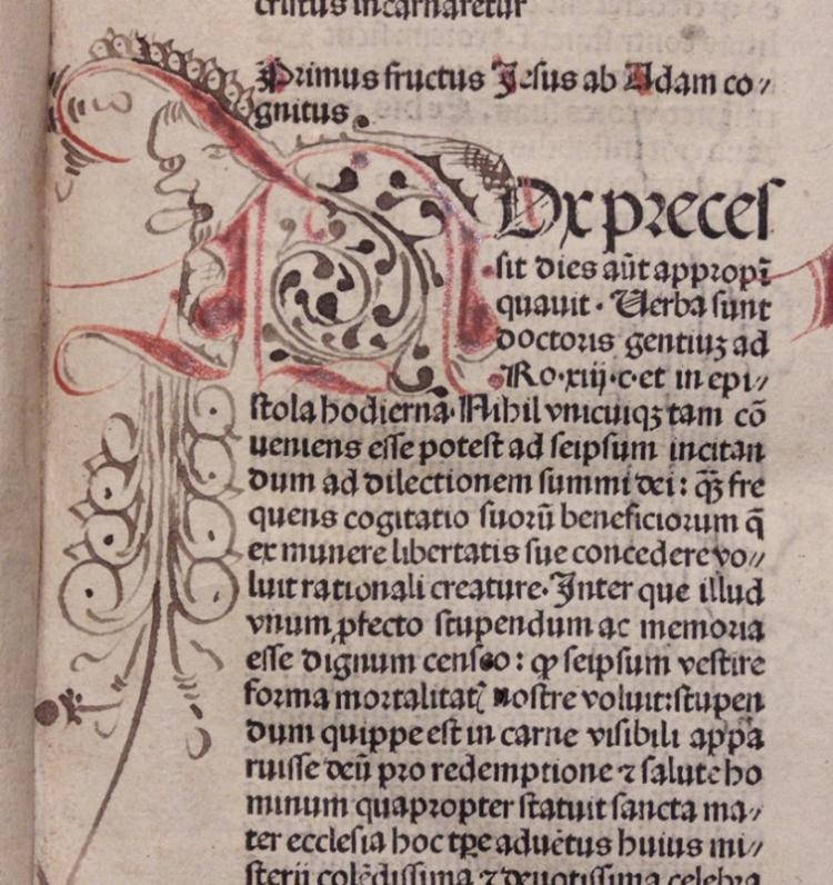 [Incunabula] Caracciolus. Sermons pre adventum