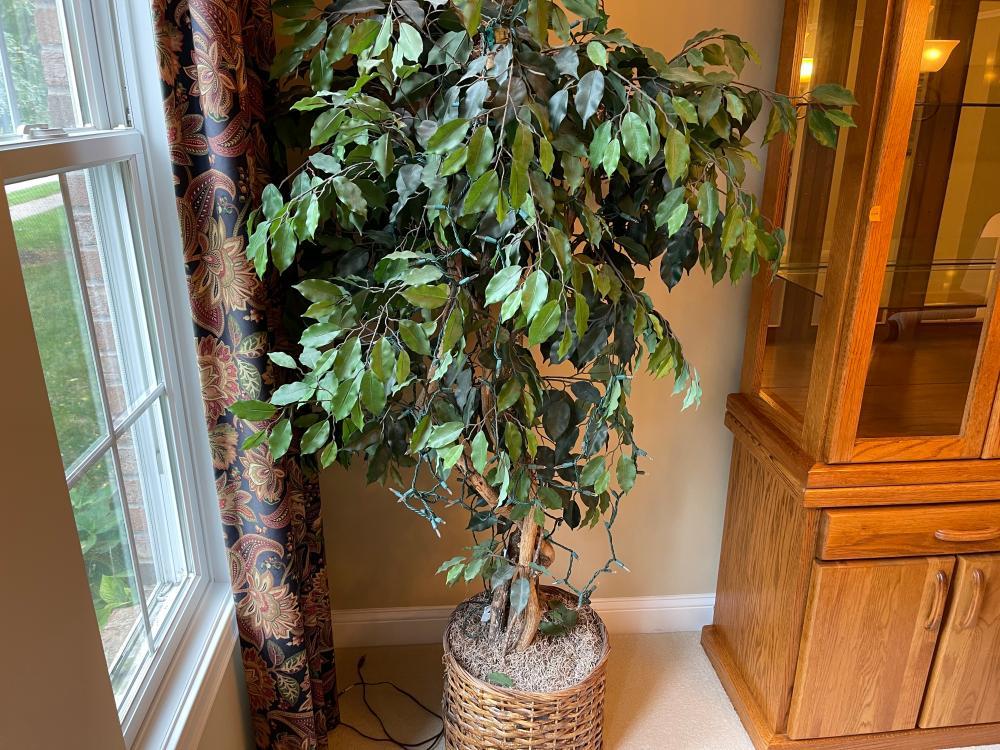 FAUX TREE LIT
