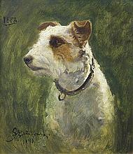 Szańkowski Bolesław - FOX TERRIER PEPA, 1940, oil, cardboard