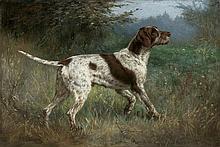 Stiepanow  Aleksandr Nikołajewicz - POINTER, 1908, oil, canvas