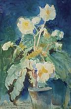 Wyczółkowski Leon - BEGONIA, 1932, watercolour, cardboard