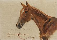 Kossak Wojciech - HORSE HEAD, 1937, oil, canvas on cardboard