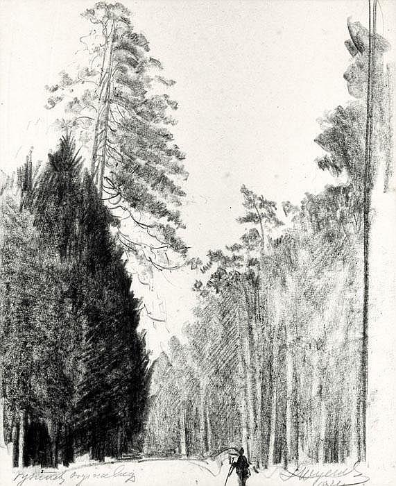 Wyczó ł kowski Leon Trees, The Woody Road,