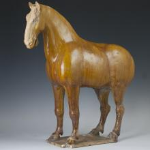 Large Tang Dynasty Glazed Earthenware Horse