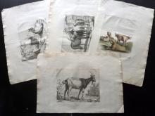 Anon. C1760 Group of 4 Large Copper Plates of Goats & Cattle