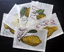 Ferrari, Giovanni Battista 1646 Lot of 6 Hand Coloured Botanical Fruit Prints of Lemons