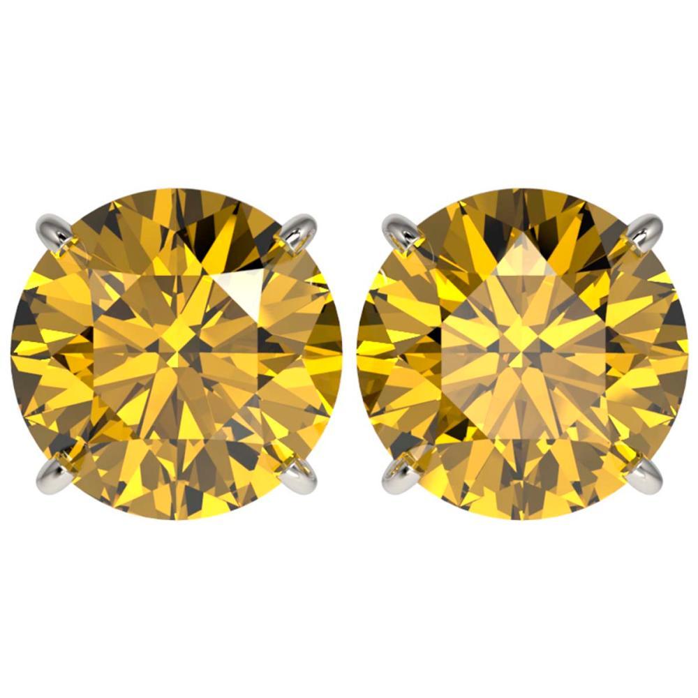 5 ctw Intense Yellow Diamond Stud Earrings 10K White Gold - REF-1380F2N - SKU:33150