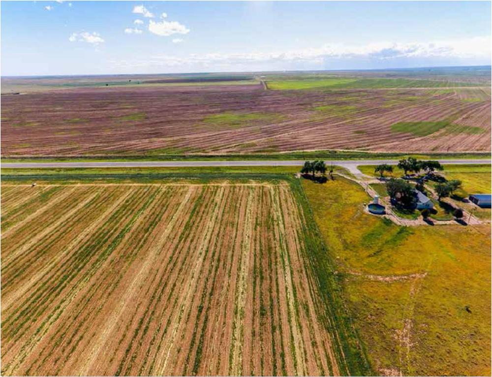 160 +/- Acres Farmland (Curry County, NM)