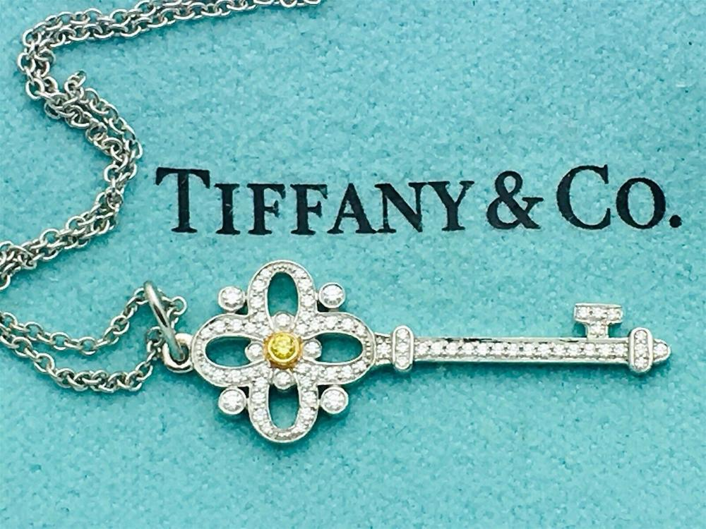 Tiffany & Co Platinum 18k Floret Key Pendand Necklace