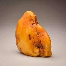 Milky/Yellow color Baltic Amber stone (313.2 g.)