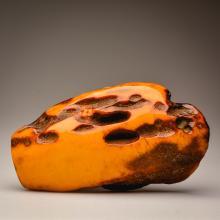 Mango/yellow Baltic Amber stone (436 g.)