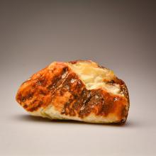 A beautiful White Baltic Amber stone (289.6 g.)