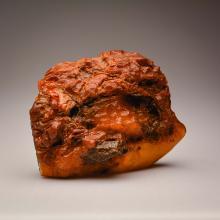 Honey Yellow Baltic Amber stone (559.6 g.)
