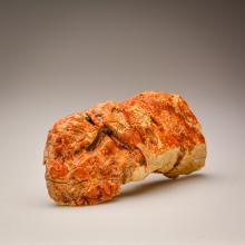 Pure White Baltic Amber stone (175.4 g.)