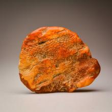 White Baltic Amber stone (186 g.)