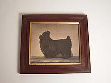 19th Century Corded Poodle Photograph by Gambier Bolton