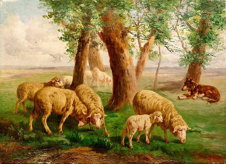 John Califano (Rome 1864 - Van Nuys, Los Angeles 1946), Grazing sheep