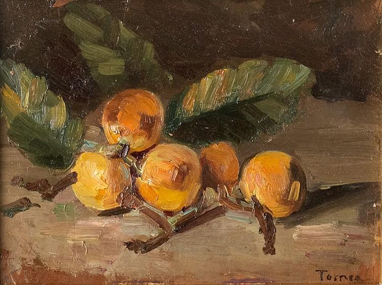 Fiorenzo Tomea (Zoppè di Cadore 1910 - Milano 1960), Loquat branch