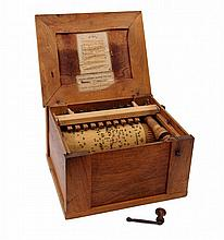 Bird Barrel Organ