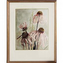 Helen Augusta Iserman Francis Hodge, (American, 1870-1958), coneflowers, gouache on paper, 9 1/2