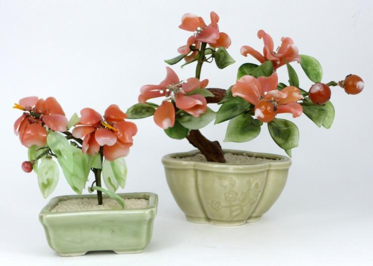 2pc CHINESE BONSAI TREES IN CELADON PLANTERS
