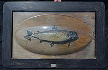 1913 Taxidermy Mounted Fish is Glass Bubble Lake