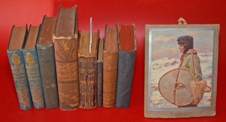 9 Antique Books, Assorted Genres