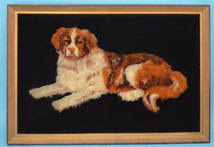 King Charles Cavalier Spaniel Dog