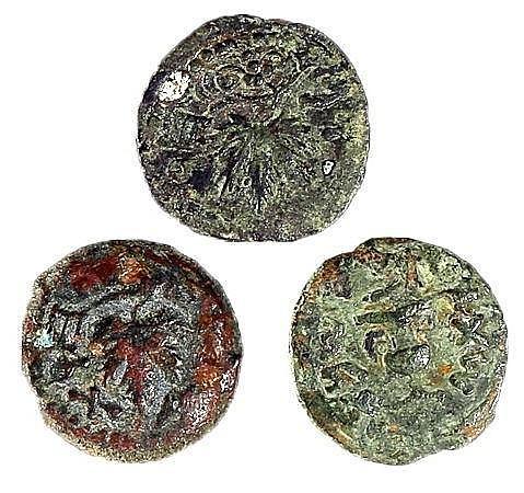 FIRST REVOLT AGAINST ROME, 66 – 73 CE A LOT OF 3 BRONZE PRUTOT Vine leaf / Amphora. Paleo-