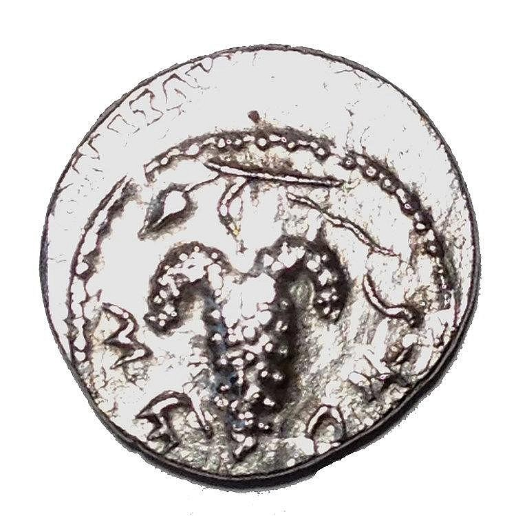 SHIMON BAR-KOKHBA, 132 – 135 CE Silver Denarius or Zuz, year two. 3.2 gr. Obverse: Bunch of gra