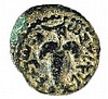 ELEAZAR THE PRIEST, 132 CE Small bronze 18 mm. Obverse: Bunch of grapes. Paleo-Hebrew inscripti