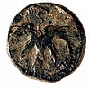 SHIMON BAR-KOKHBA, 132 – 135 CE Medium bronze 23 mm, undated. Obverse: Vine leaf. Paleo-Hebrew