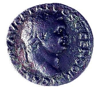 JUDAEA CAPTA, TITUS, 79 – 81 CE Bronze As 26 mm. Obverse: Bust of Titus to r. Reverse: Palm tre