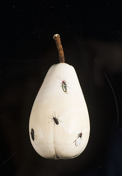A SHIBAYAMA INLAID IVORY PEAR WITH INSECTS