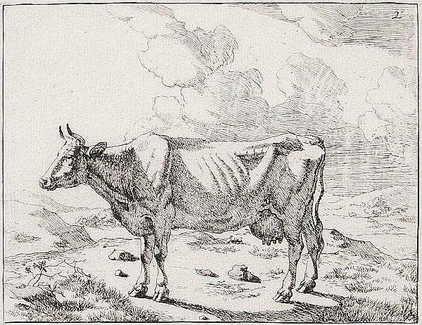 MARCUS DE BYE 1639 - Den Haag - um 1690 Kühe.