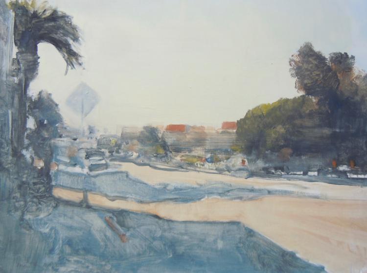 Steve Smith: Playa del Ray
