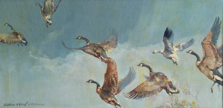 Fllying Geese