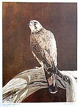 Bruce Lattig, WILD BIRDS OF NORTH AMERICA SERIES