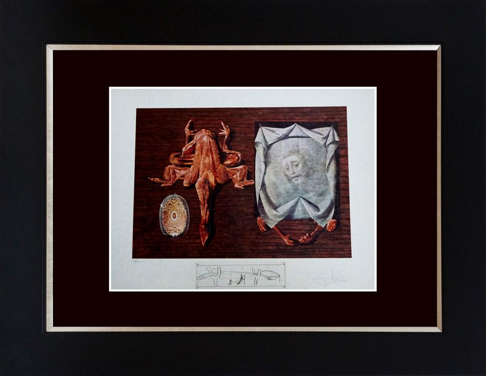 Lot 2894: Salvador Dali Limited Edition Lithograph