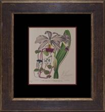 Metaphysical Flowers by Mihail Chemiakin Limited Edition Lithograph