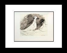 Pablo Picasso Peace Dove Lithograph Marina Picasso Edition