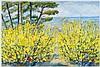 MICHELE CASCELLA Landscape with broom Oil on canvas, Michele Cascella, €1,900