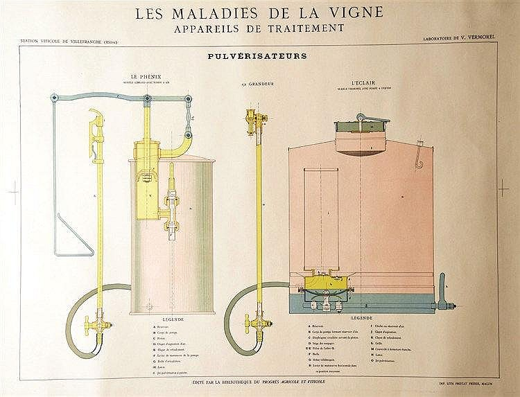 Les maladies de la vigne vers 1930 appareils de traiteme - Traitement de la vigne ...