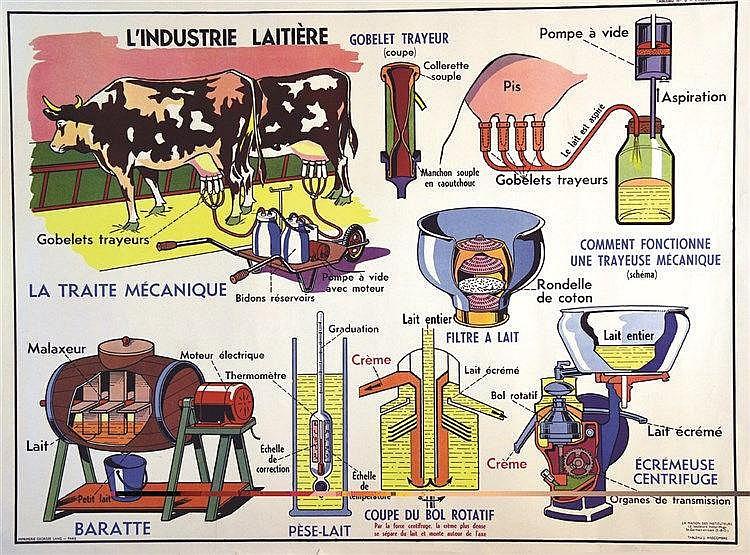 ANSCOMBRE J.  L'Industrie Laitière     vers 1960
