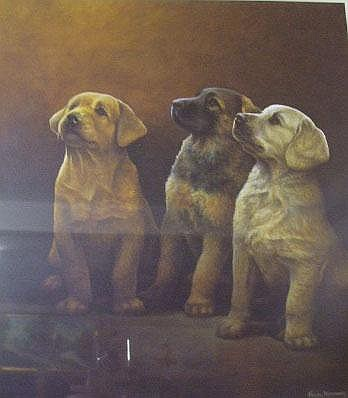 A Nigel Hemming Print featuring three puppies,
