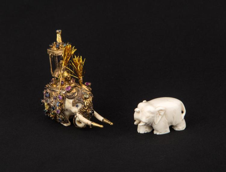 Elefanti | Elephants.